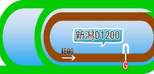 新潟ダート1200m2次画像
