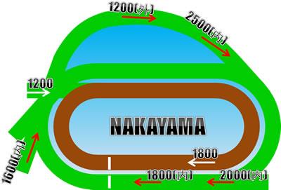 競馬場コース画像例