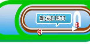 新潟ダート1800m二次元画像